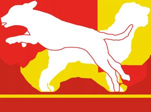 yhdistyksen logo